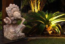 Outdoor Lighting / Pool lighting, garden lighting