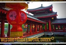 China / All about China's attractions, adventures, culture, food, and accommodations.