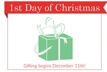 12 Days of Christmas Giveaway / Enter to win December 11, 2014 through December 23, 2014 for daily prizes plus a grand prize worth over $400. Every day we're giving away new skin care products and accessories from your favorite brands like Obagi, Jan Marini and more.