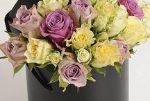 floral vessels / by Vickie Boyer