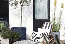 Orangeri & Terrasse