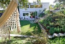 Garden / by Julie Bettwy