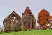 Buildings: Forgotten but not Gone / by Renee Cordray