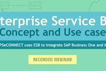 Ecommerce - ERP Integration