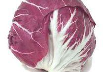LEAP Lettuce