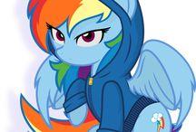 hoodie ponies