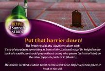 Revive Sunnah