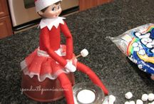 HOLIDAYS Elf on the Shelf