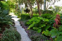 Landscaping / by Gail Aker