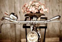 Cyklar & blommor