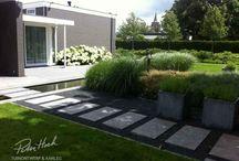 Garden design / ideas
