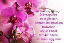 Születésnapra és Névnapra