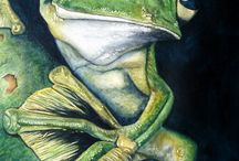 Artsy Frogs / by Jennifer Williamson