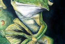 Artsy Frogs / by Jennifer Williamson