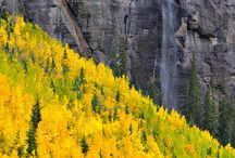 "Fall in Telluride / One of the most beautiful, and most quiet seasons in Telluride is our infamous ""gold season"", filled with changing leaves and beautiful wildlife. Book your autumn vacation today- call 800.970.7541 or visit http://www.telluride-rentals.com"