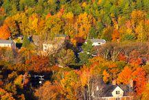 Fall Foliage in Bar Harbor and Acadia National Park / #VisitBarHarbor
