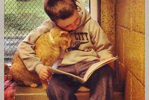 Дети и животные / Красивые и смешные фото детей с животными