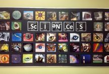 Second Grade Science / by Danielle Hansen