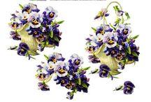papier kwiaty i rośliny