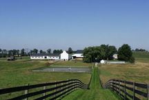 Photos by Others / Photos I've discovered on Pinterest and other platforms related to Lancaster County. These are not Amish Road Show photos.