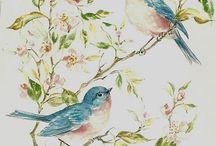 Gül ağacında kuşlar