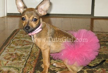 Great uses for tutu...
