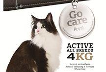 Go Care Royal / Mancare super premium pentru caini si pisici