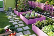 Backyard ideas / by Jessica Rodriguez