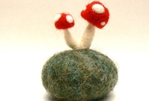 Flora - Mushrooms & Lichens