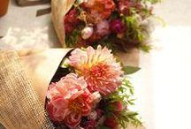 pojedyncze kwiaty