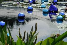 Chihuly and Jolley / by Linda Attanasio