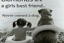 4 Legged Family Members / Unconditional love from a pet... Nothing feels quite like cuddling our furry family members!!
