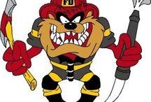taz bombeiros