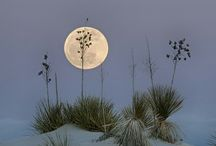 Księżyc/Moon