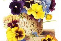 Arte: Flores, plantas y árboles.