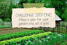 Organic Gardening / 0