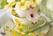 Kukkakimput, ruukut ja asetelmat - Bouquets, Pots and Flower Compositions
