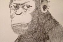 Art work / Ape