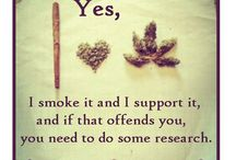 recognize and legalize