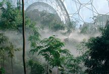 Eden Project / by Padstow Touring Park