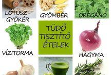 Egészség / Forrás: internet