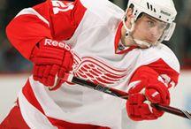 Red Wings @ Eliteprospects