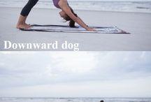 Yoga all damn day / Love yoga