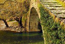 poduri  străvechi