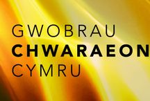 Wales Sport Awards 2014 / The annual showcase of elite and grassroots sport in Wales.