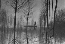 Photography - Minimalist / by Frances Lim