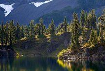 Живописное озеро Хайес /  Своим очарованием озеро Хайес полюбилось молодоженам. На его берегах проводят много свадеб и других важных мероприятий.
