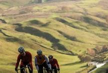 tour de France Yorkshire 2014