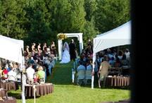 Wedding / by Suzanne Swett