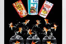 Aquaria Products